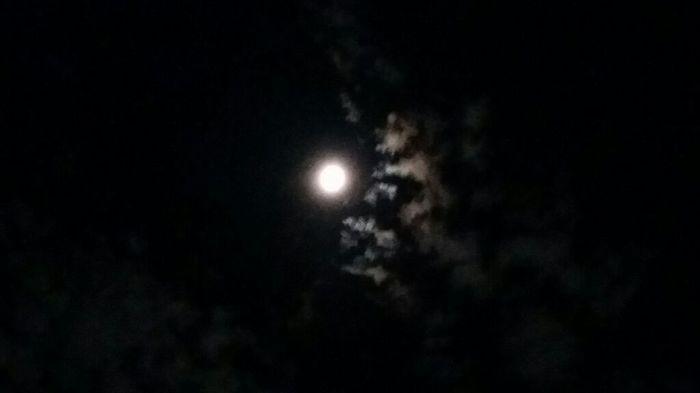 2夜連続スペシャルお月様