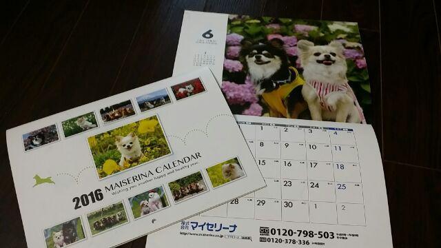 ワンちゃんカレンダー