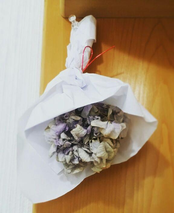 魔除け紫陽花