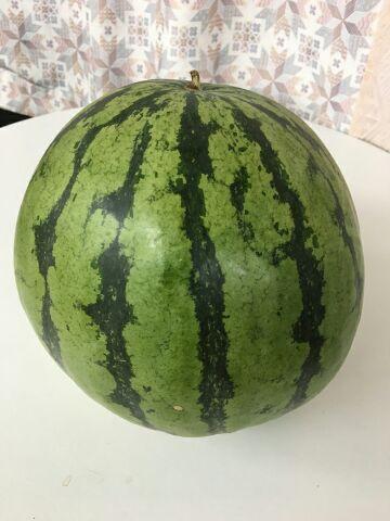 夏の果物の横綱